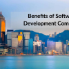Thumbnail image for Benefits of software development company and the trends it follows