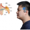 Thumbnail image for Hearing damage and bone conduction headphones