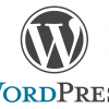 Thumbnail image for What can you really expect from the best WordPress development organization