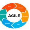 Thumbnail image for Agile Development Method: How it Helps to Meet Clients Requirements