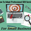 Thumbnail image for How To Adopt Professional SEO Services For Small Business?