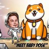 Thumbnail image for Dogecoin surges after Baby Doge Tweet by Elon Musk