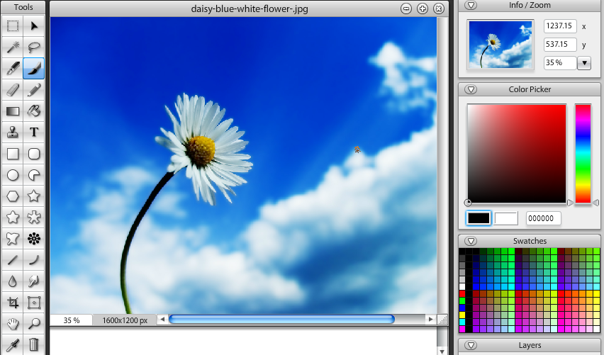 Top 5 free online photo editors mostly like photoshop Free photo software