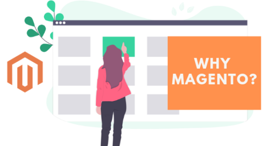 Why Magento Agency is the Right Partner for your E ...